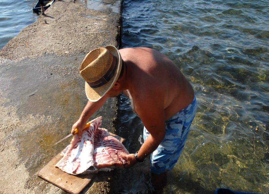 Ψαράς